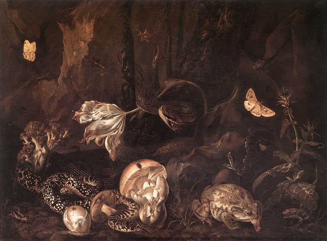 SCHRIECK, Otto Marseus van Still-Life with Insects and Amphibians ar