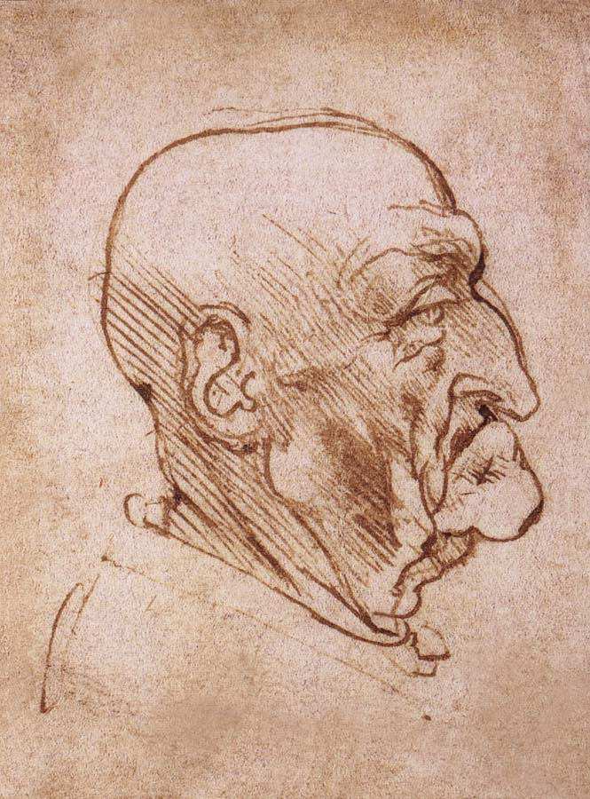 LEONARDO da Vinci Profile of an old man