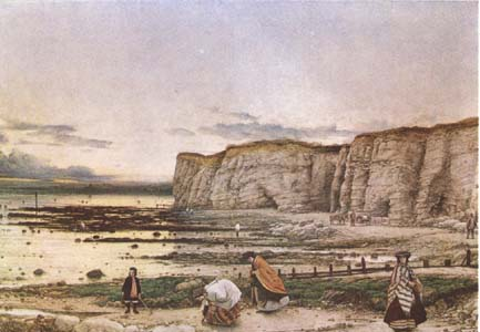 William Dyce Pegwell Bay in Kent.A Recollection of October 5 th 1858  (mk09)