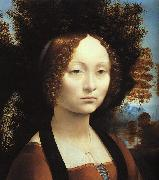 Leonardo  Da Vinci Portrait of Ginerva de'Benci USA oil painting reproduction
