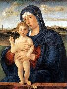 BELLINI, Giovanni Madonna with Blessing Child 23ru oil painting on canvas