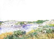 The Little Pond at Appledore, Childe Hassam