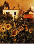 Gustave Caillebotte Sunflowers, Garden at Petit Gennevilliers USA oil painting reproduction