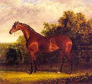 Negotiator, the Bay Horse in a Landscape