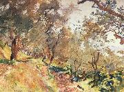 Trees on the Hillside at Majorca, John Singer Sargent