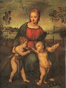 Raphael Madonna of the Goldfinch oil painting artist