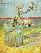 Blooming Almond Stem in a Glass, Vincent Van Gogh