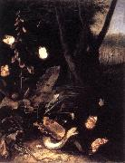 SCHRIECK, Otto Marseus van Still-life with Plants and Reptiles ery oil painting artist