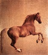 STUBBS, George Whistlejacket r oil painting