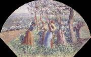 Camille Pissarro Peasant Women Placing pea-Sticks in the Ground oil painting