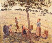 Apple picking at Eragny-sur-Epte, Camille Pissarro
