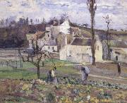 Cabbage patch near the village, Camille Pissarro