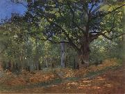 The Bodmer Oak,Forest of Fontainebleau, Claude Monet