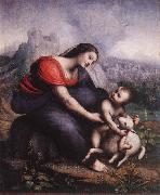 Madonna and Child with the Lamb of God, Cesare da Sesto