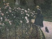 Some Rose in the garden, Gustave Caillebotte