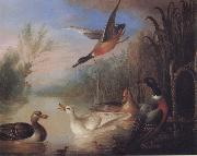 Marmaduke Cradock Waterfowl in a Landscape