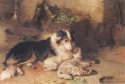 Walter Hunt The Shepherd-s Pet oil painting