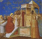 Presentation of the Virgin in the Temple