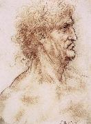 LEONARDO da Vinci Profile one with book leaves gekroten of old man oil painting