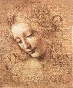 Madchenkopf with confused hair, LEONARDO da Vinci