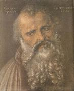 Head of the Apostle Philip, Albrecht Durer