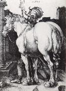The Large Horse, Albrecht Durer