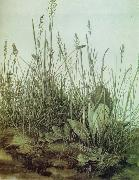 The Great Piece of Turf, Albrecht Durer