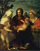 Madonna and child with Sts Catherine and Elizabeth,and St John the Baptist, Andrea del Sarto