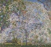 Spring,The Dogwood Tree, Childe Hassam