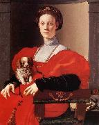 Portrait of a Lady in Red, Pontormo, Jacopo
