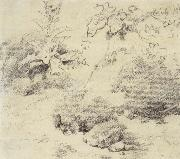 Study for a Foreground,a Bank with Weeds and Thistles