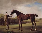 George Stubbs Lustre hero by a Groom oil painting reproduction