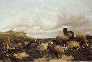 unknow artist Sheep 159 oil painting reproduction