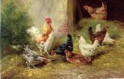 poultry  127