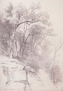Study of Trees and Rocks,kaaterskill Clove