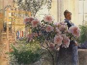 Carl Larsson Azalea oil painting reproduction