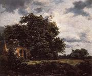 Cottage under the trees near a Grainfield