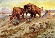 unknow artist Buffalo Family oil painting reproduction