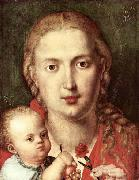 The Madonna of the Carnation, Albrecht Durer