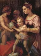 Holy family and younger John, Andrea del Sarto