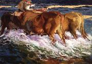 Oxen Study for the Afternoon Sun