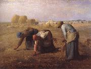 jean-francois millet Axplockerskorna oil painting reproduction