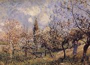 Orchard in Sping-By