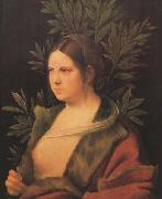 Giorgione Laura (MK45) oil painting