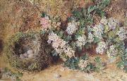 William Henry Hunt,OWS Chaffinch Nest and  May Blossom (mk46) oil painting