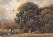 unknow artist Large Oak oil painting reproduction