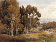 A Grove of Eucalyptus in Spring, unknow artist