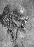 Head of an Apostle Looking Downward, Albrecht Durer
