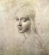 Head of a girl, LEONARDO da Vinci