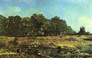 Alfred Sisley Avenue of Chestnut Trees near La Celle-Saint-Cloud oil painting reproduction